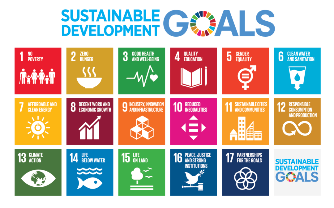 How can small and medium-sized companies thrive in the context of the Sustainable Development Goals (SDGs)?